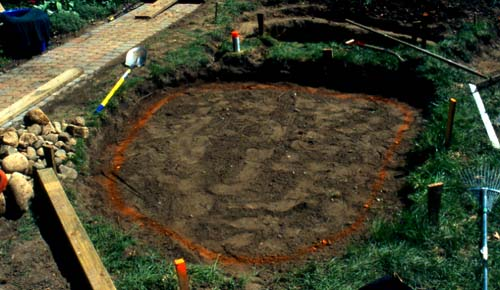 Digging The Backyard Pond Presented By Plantsgalore Com