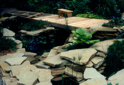 Filling the backyard pond presented by plantsgalore com for Filling in a pond